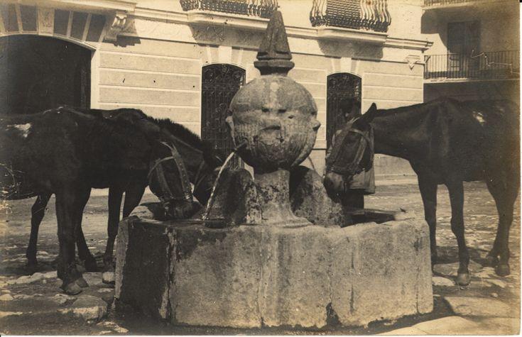 [Tres mulas bebiendo de una fuente] (s.a.) - Anónimo