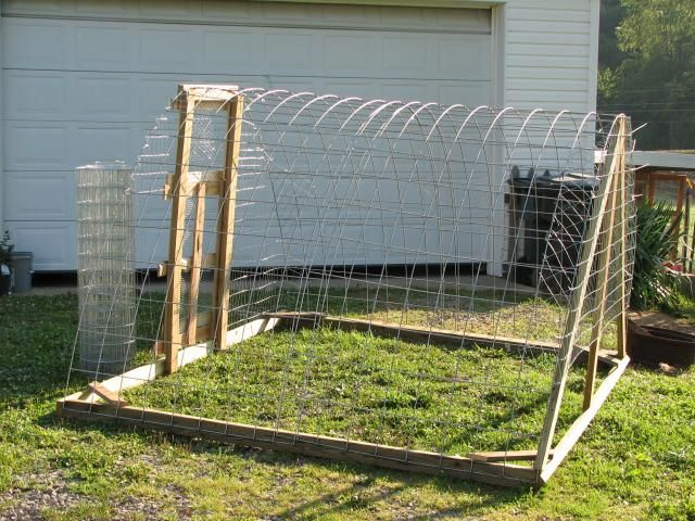 another hoop house chicken tractor