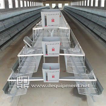 3 Tiers of 120 birds layer cage 1)  Semi automatic cage system is lower cost and practical 2)  Prevent disease transmission,  improve revenue 3)  Good ventilation, increased the laying rate of layers