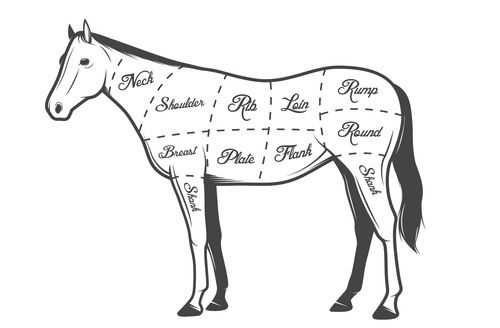 Never gonna eat it but I dig the illustration: On the Menu at Mamie Taylor's: Horse Meat