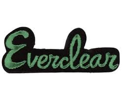 everclear band 2015 - Google Search