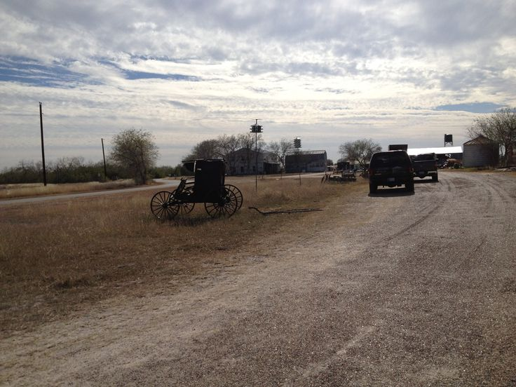 Bee County Texas Amish buggy outside combination store