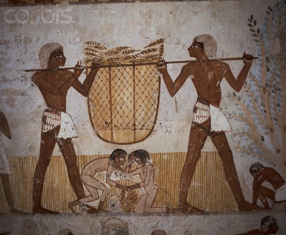 ancient egyptian everyday life The daily life of ancient egyptian slaves revolved around the work they were required to perform they were the lowest class of society, but in many instances they were more fortunate than free peasants who were taxed a portion of their produce.