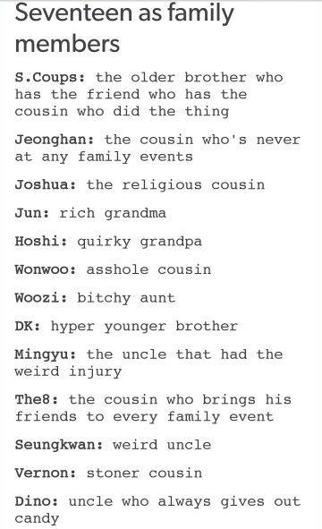 Seventeen as a Family Members XD
