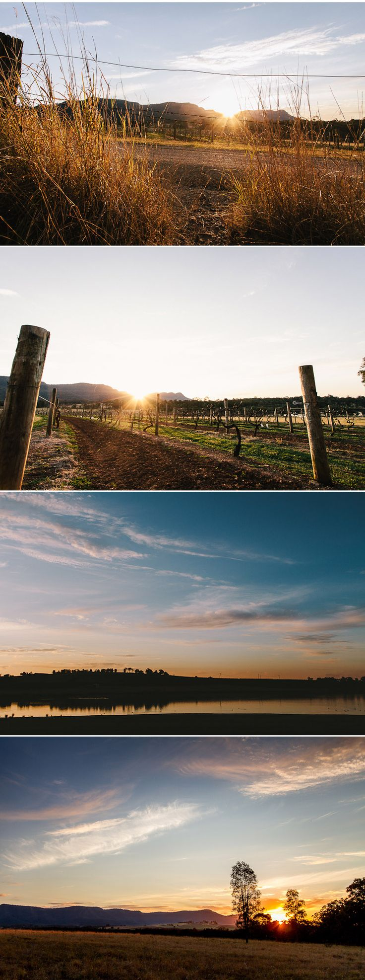Gorgeous sunsets in the Hunter Valley! Have you considered a wedding at Sunset?  #chateauelan #huntervalley #winecountry #australia #nsw #wedding