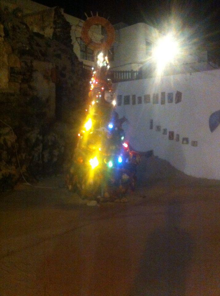 Der Weihnachtsbaum von El Cotillo