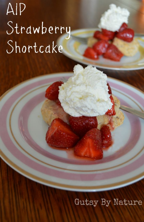 AIP Strawberry Shortcake (made with cassava flour) - Gutsy By Nature