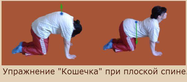 Рекомендую вам выучить упражнения при плоской спине наизусть и выполнять их ежедневно, не пропуская ни одного дня, достигая задач ЛФК при плоской спине:  1. Укреплять мышечный корсет: мышцы спины, грудной клетки, ягодиц, бедер и живота. 2. Способствовать формированию физиологических изгибов позвоночника. 3. Закреплять чувство правильной осанки. 4. Укреплять мышцы голеней, удерживающих своды стоп для профилактики плоскостопия.