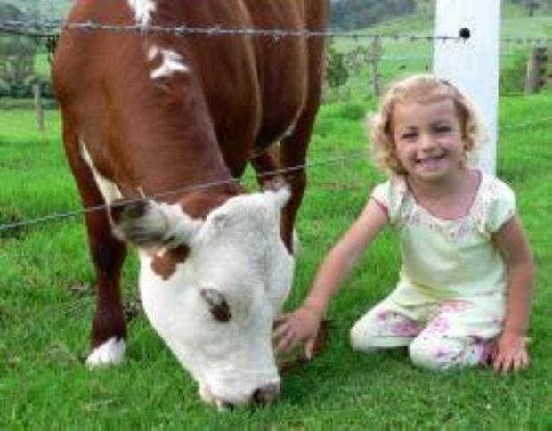 Ashmar Farm Stay