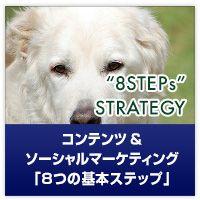 コンテンツ戦略、コンテンツを中心に置いたソーシャルメディアマーケティングは、今までのマーケティングとはまた違う進め方をした方が、楽かつうまく回るんです。その具体的なフローを「8STEPs」でご紹介します。