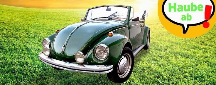 Spare bis zu 850 Euro mit der wgv Autoversicherung