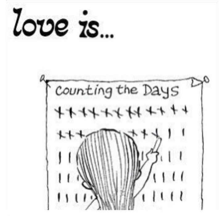 Counting the Days Down Quotes