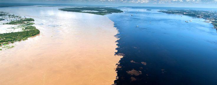 Incontro delle acque, Rio delle Amazzoni e Rio Negro