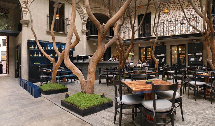 El restaurante Azul Histórico, se despliega en el patio interior del hotel Downtown al abrigo de los árboles +fotos: