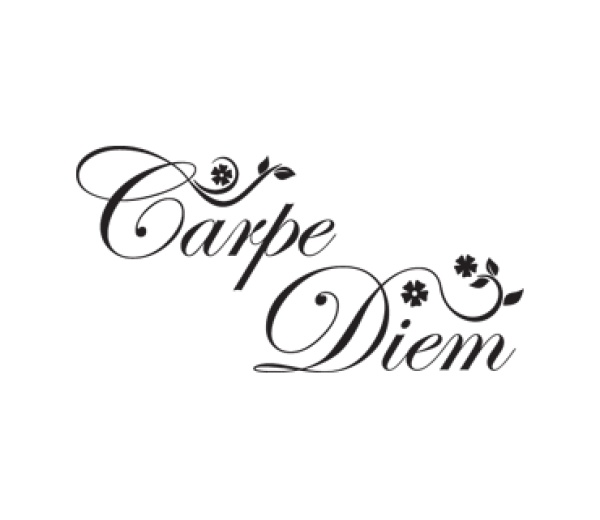 die besten 25 tattoo carpe diem ideen auf pinterest. Black Bedroom Furniture Sets. Home Design Ideas