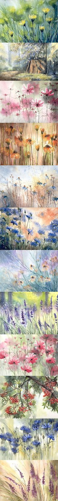 many pictures of flowers in watercolor