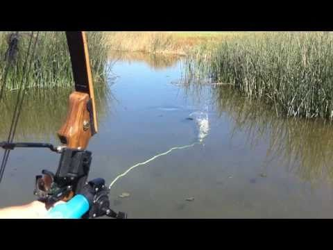 Illinois Bowfishing Charters - YouTube