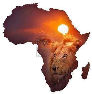 ВОПРОС 4. Мой идеальный отпуск-мечта это, конечно, Африка. Без вариантов. В кругу людей, которых хорошо знаю и которым доверяю. Чтобы некому было испортить мою мечту. Одна не поехала бы точно.