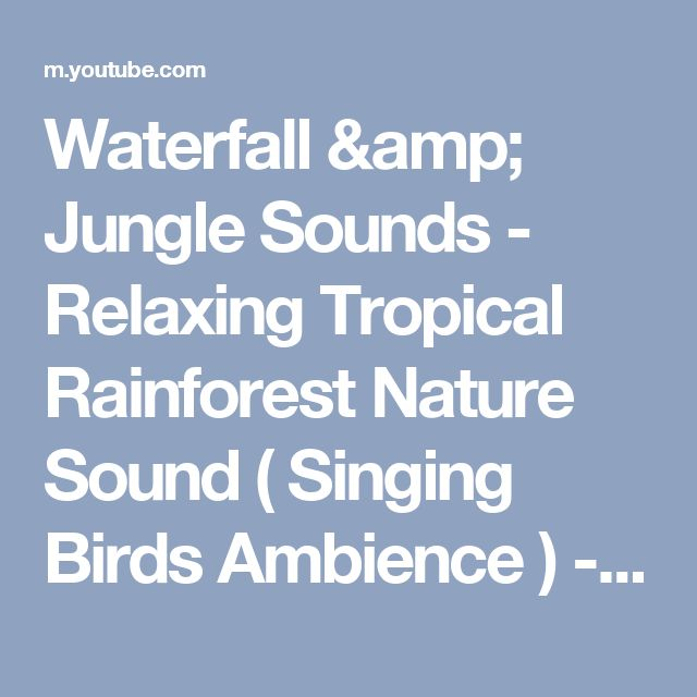 Waterfall & Jungle Sounds - Relaxing Tropical Rainforest Nature Sound ( Singing Birds Ambience ) - YouTube