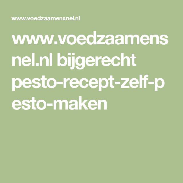 www.voedzaamensnel.nl bijgerecht pesto-recept-zelf-pesto-maken