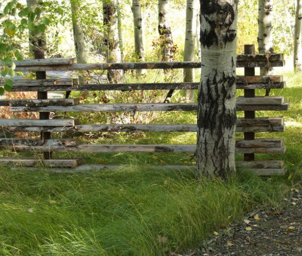 17 Best Images About Fences On Pinterest Gardens Raised
