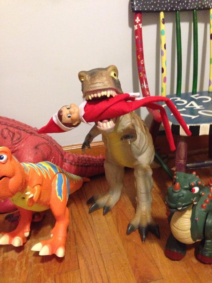 elf on the shelf in dinosaurs mouth!