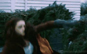 Tribute Thursday: Twilight vs Harry Potter memes