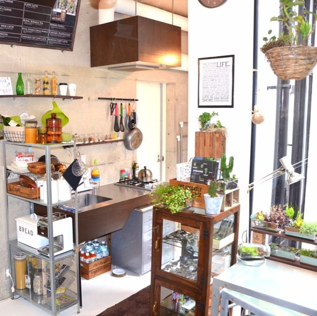 003さんの、地下室,一人暮らし,DIY,植物,賃貸,多肉植物,キッチン,のお部屋写真