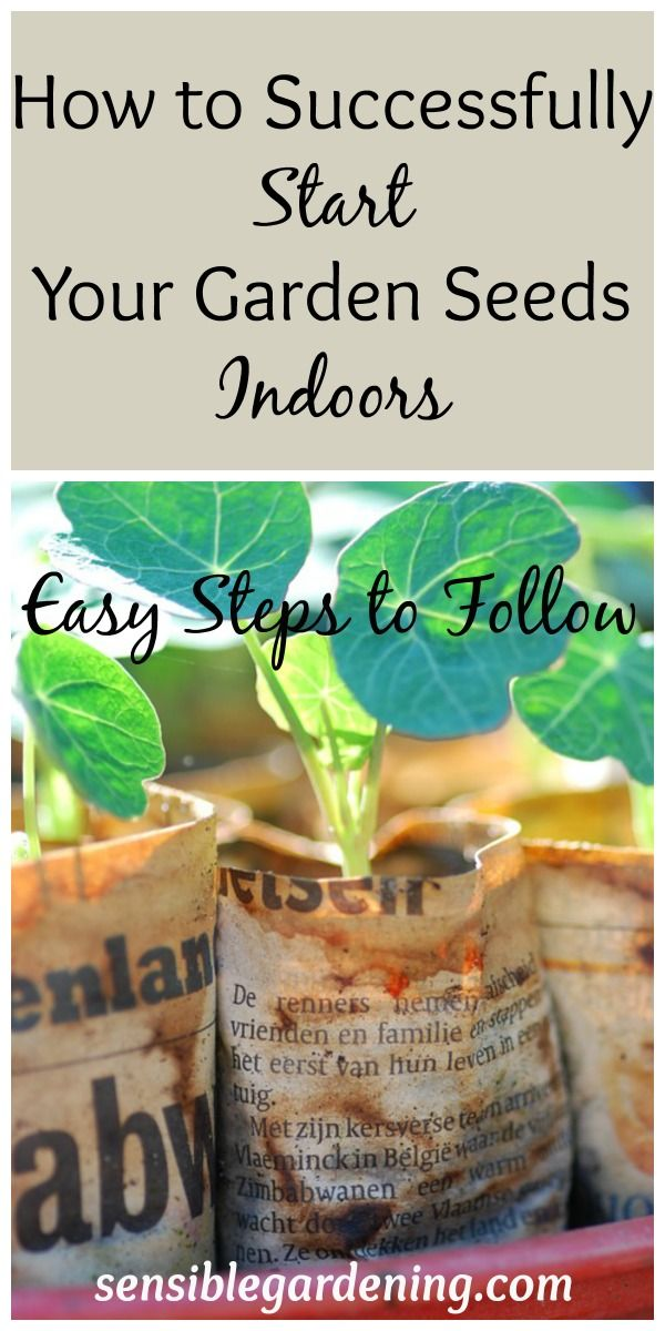 How To Successfully Start Your Garden Seeds Indoors. If You Want To Get A  Head