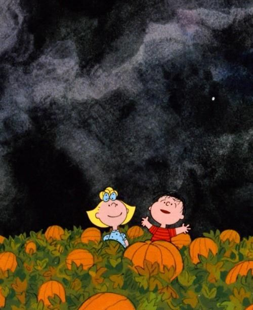because who doesn't love 'the great pumpkin charlie brown'.....