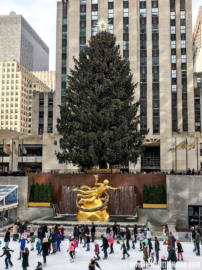 Free Pictures New York Christmas Windows 2020 Best NYC Christmas Windows  Free Walking Tour! in 2020   Nyc