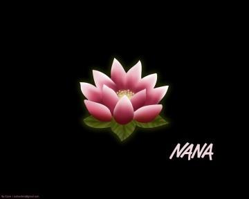 """Uno dei membri dei d.flies si chiama """"Rendy"""". Il nome """"Ren"""" in giapponese può indicare il fiore di loto. Uno dei protagonisti del famoso manga/anime di ambientazione musicale """"Nana"""" si chiama proprio Ren."""