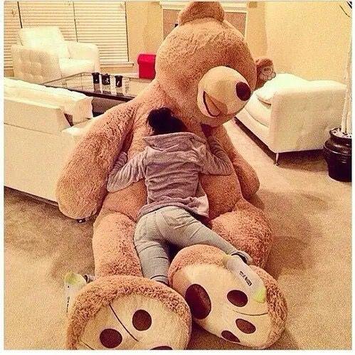 teddy oso