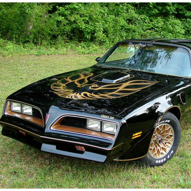 my first car 77 pontiac firebird minus the gold bird and gold trim lots of fun memories in. Black Bedroom Furniture Sets. Home Design Ideas