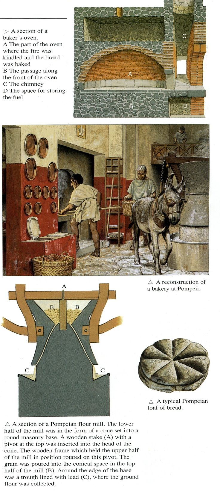 Roman bakeries ~ Peter Connolly