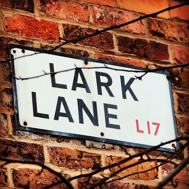Lark Lane street sign