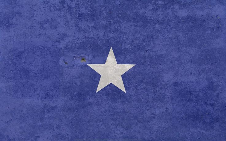 the flag of somalia