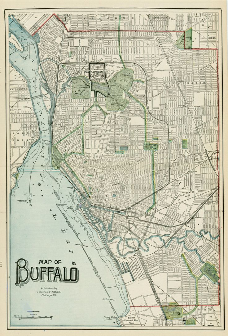 Vintage Print of Buffalo (hometown) for table accoutrements