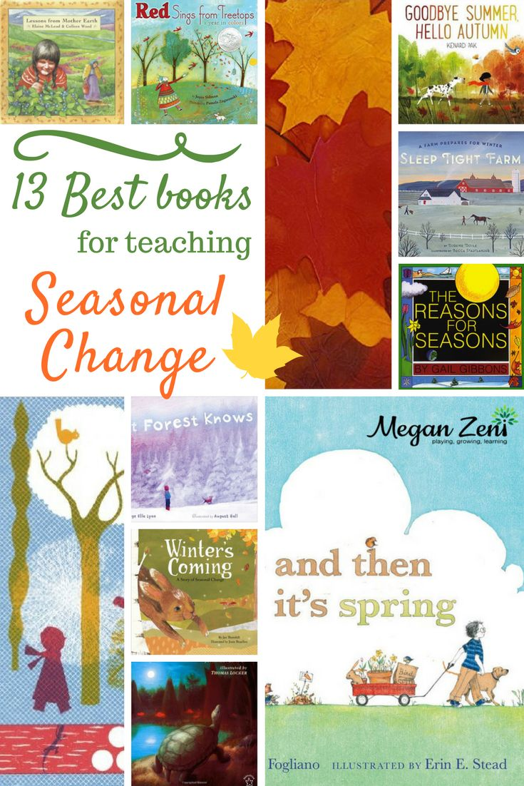 The best way to teach seasonal change is to go outside and experience it! Us teacher types get excited about introducing new concepts with literature, so here are my top picks for picture books that explore seasonal change with grades K-5. Read the full blog post at meganzeni.com