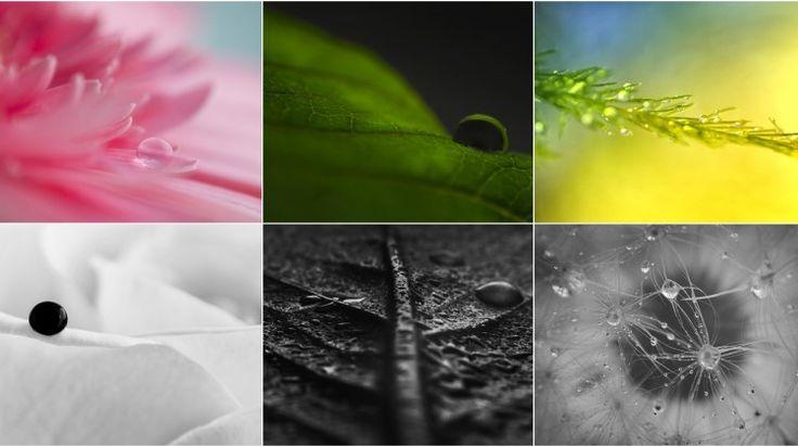 Idei de fotografii cu picaturi de apa