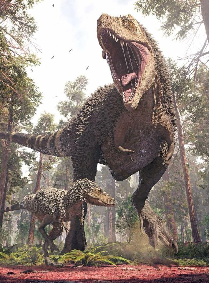 Pin By Giuliana Bruiget Velorio On Dinosaurios Dinosaur Illustration Dinosaur Pictures Prehistoric Animals 10 dinosaurios gigantescos.todos sabemos que los dinosaurios eran enormes, nos entusiasma saber que seres vivos lograron tener ese tamaño видео 10 dinosaurios gigantes канала de todo. dinosaur pictures prehistoric