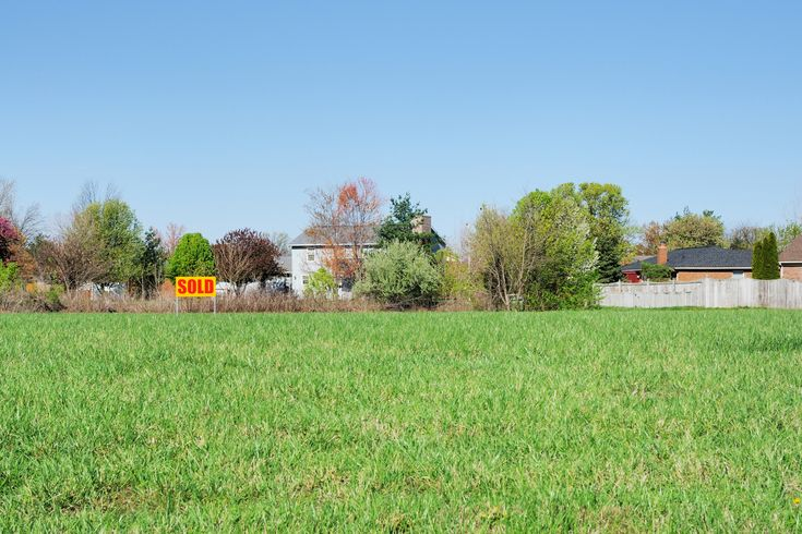 The Do's and Don'ts of Buying Vacant Land | US News Real Estate