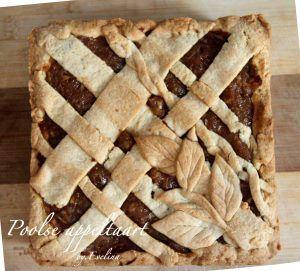 """Er is niets lekkerder dan de aromatische kaneelgeur van zondags appelgebak in het hele huis. Ik heb eerder geschreven over """"oma's appeltaart"""", traditional Nederlands gebak. De eerste keer dat ik dat hier had geprobeerd. En dit is die ik ken, de Poolse versie, die mijn oma en daarna mijn moeder hebben gebakken."""