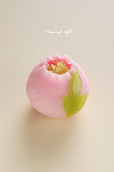 宝月堂さんの、美しくておいしい和菓子。 | micagraph