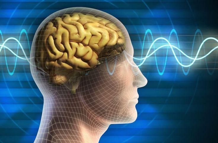 Sanna Ehdin: Bygg om hjärnan och ändra dina tankemönster