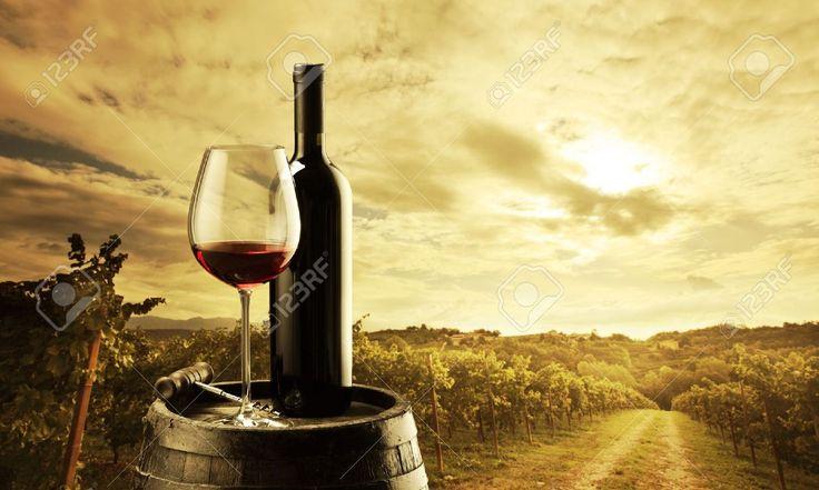 85 best Copas y botellas de vino images on Pinterest | Botellas de ...