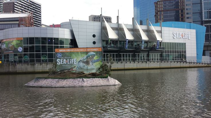 Kellie's #RedBalloon review of the Sea Life Melbourne Aquarium