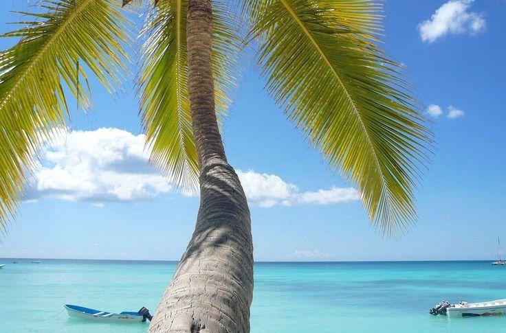 Dominikánská republika: Pravý a návykový Karibik