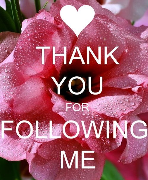 Thank u for following me xo