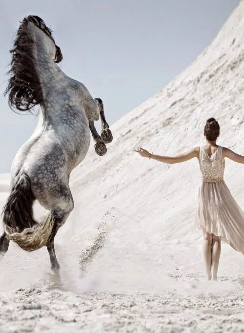 Horse rearing and girl walking in desert sand. Amazing horse photography, Dapple grey horse, black mane and tail, gorgous markings and coloring, girl just looking like a little dancing princess. Picture is priceless. Fotoğraf. Please also visit www.JustForYouPropheticArt.com for colorful inspirational art. Thank you so much! Blessings!